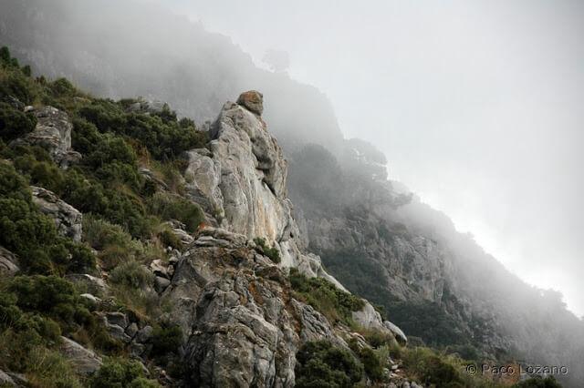 Sierra Blanca, Málaga