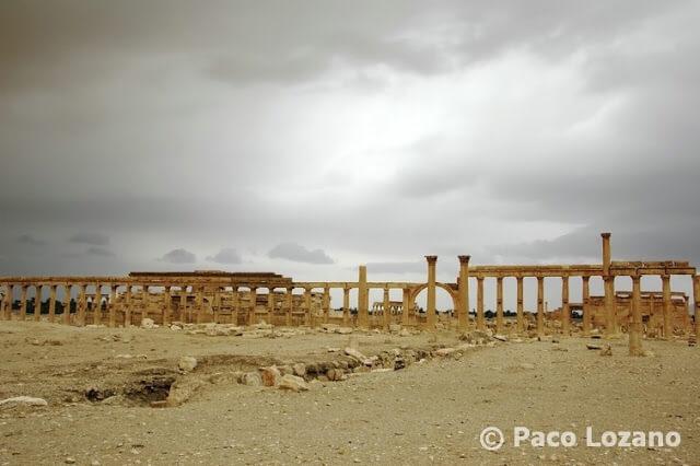 Palmira, la ciudad del desierto
