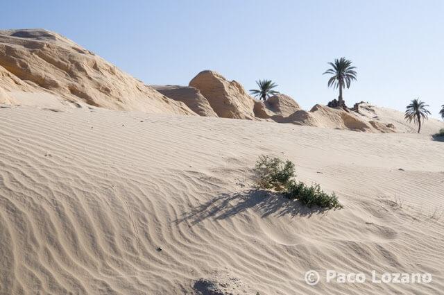 Dunas petrificadas en el sur de Túnez