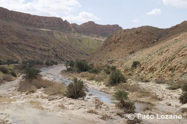 Garganta de Selja, Túnez