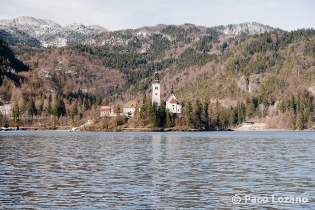 Isla del lago Bled