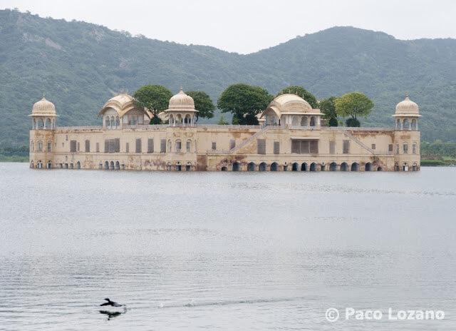 Jaipur: Jal Mahal